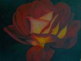 Acsai  Anna / Bordó rózsa