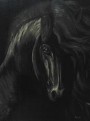 Acsai  Anna / Fekete gyöngy
